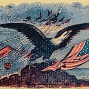 stationary_eagle