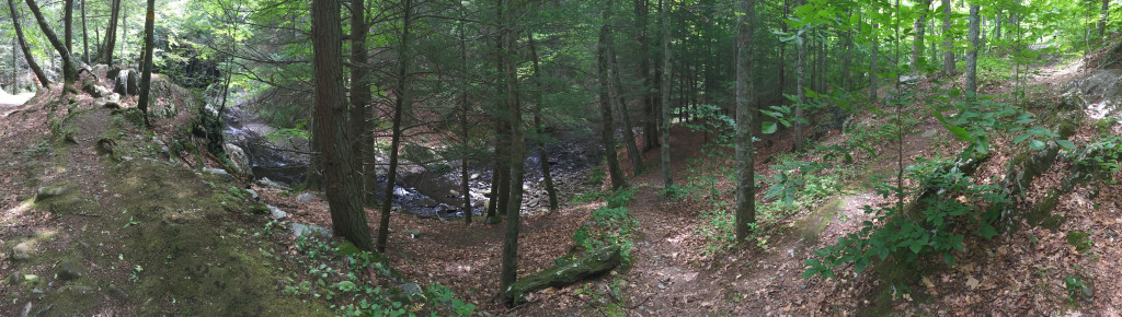 Panorama view of the path leading to Sperry Falls.